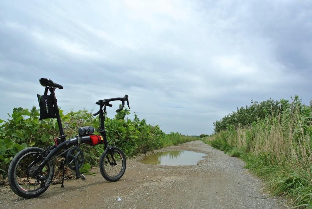 【話題の鰻屋さん大はしへ】折りたたみ自転車DAHONで輪行サイクリング!【牛久沼編】
