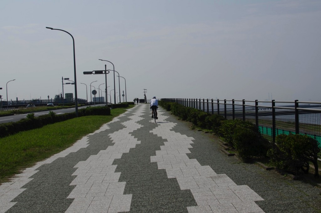 DAHONで行くサイクリング【美浜大橋with MARIN編】