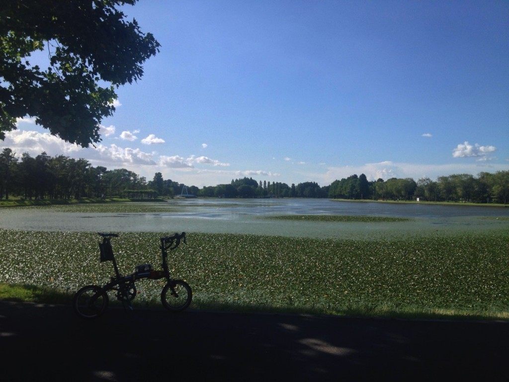 折りたたみ自転車DAHONで行く輪行しないサイクリング【暑さと強風に負けるな水元公園編】