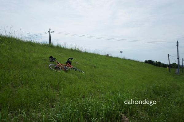 真夏に100kmのサイクリングをするときに考慮するべき5つのこと