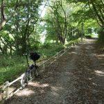 都会のオアシス花見川サイクリングロードオフロード区間について熱く語ります!