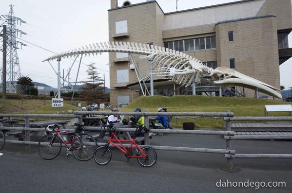 千葉県に道の駅いくつあるの?29全部をサイクリングで制覇を目指す